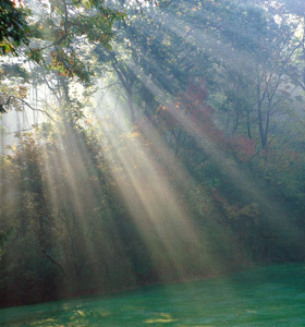 About Reiki and Deep Soul Healing. bigger light thru trees